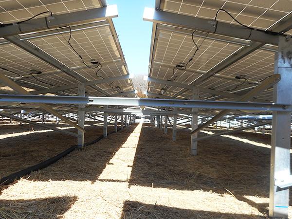 太陽光メガソーラ工事の様子14